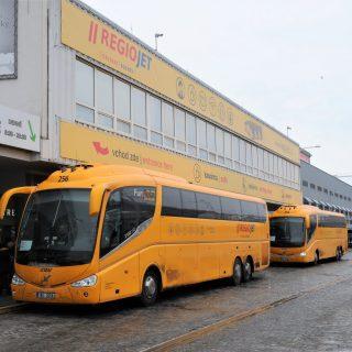 Regiojet daagt dominant Flixbus